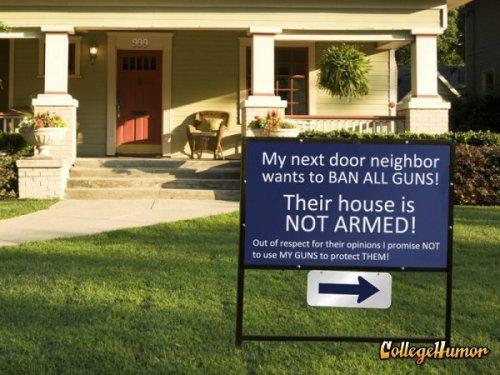 Gun Control Irony