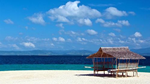 cuba-coco-beach-nature