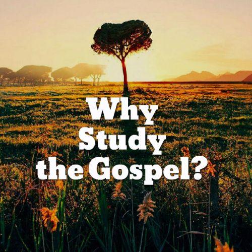 Why study the gospel