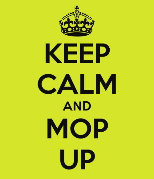 mop up