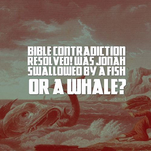 bible-contradiction-resolved-was-jonah-swallowed-by-a-fish-or-a-whale