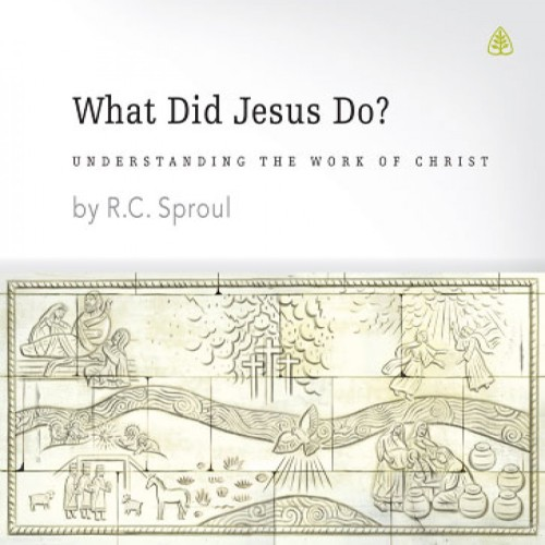 what_did_jesus_do_rc-sproul-amazon-prime