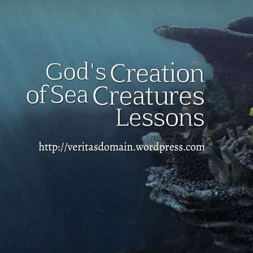 God's Creation of Sea Creatures Lesson 3: Starfish